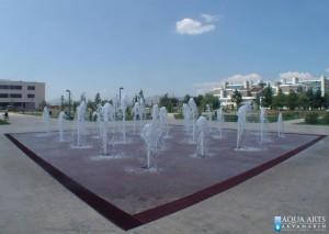 1.Fontana ispred Univerziteta u Podgorici, Projekat