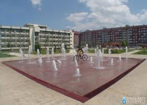 2.Fontana ispred Univerziteta u Podgorici, Projekat