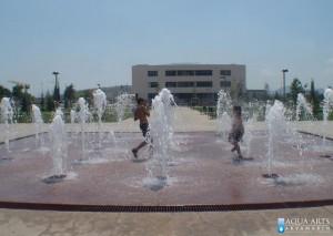 3.Fontana ispred Univerziteta u Podgorici, Projekat