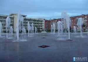 5.Fontana ispred Univerziteta u Podgorici, Projekat