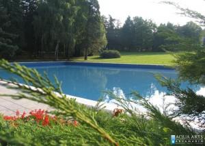 3.Dekorativni bazen u uređenom zelenilu kompleksa Belog Dvora