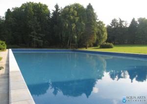 4.Dekorativni bazen u uređenom zelenilu kompleksa Belog Dvora